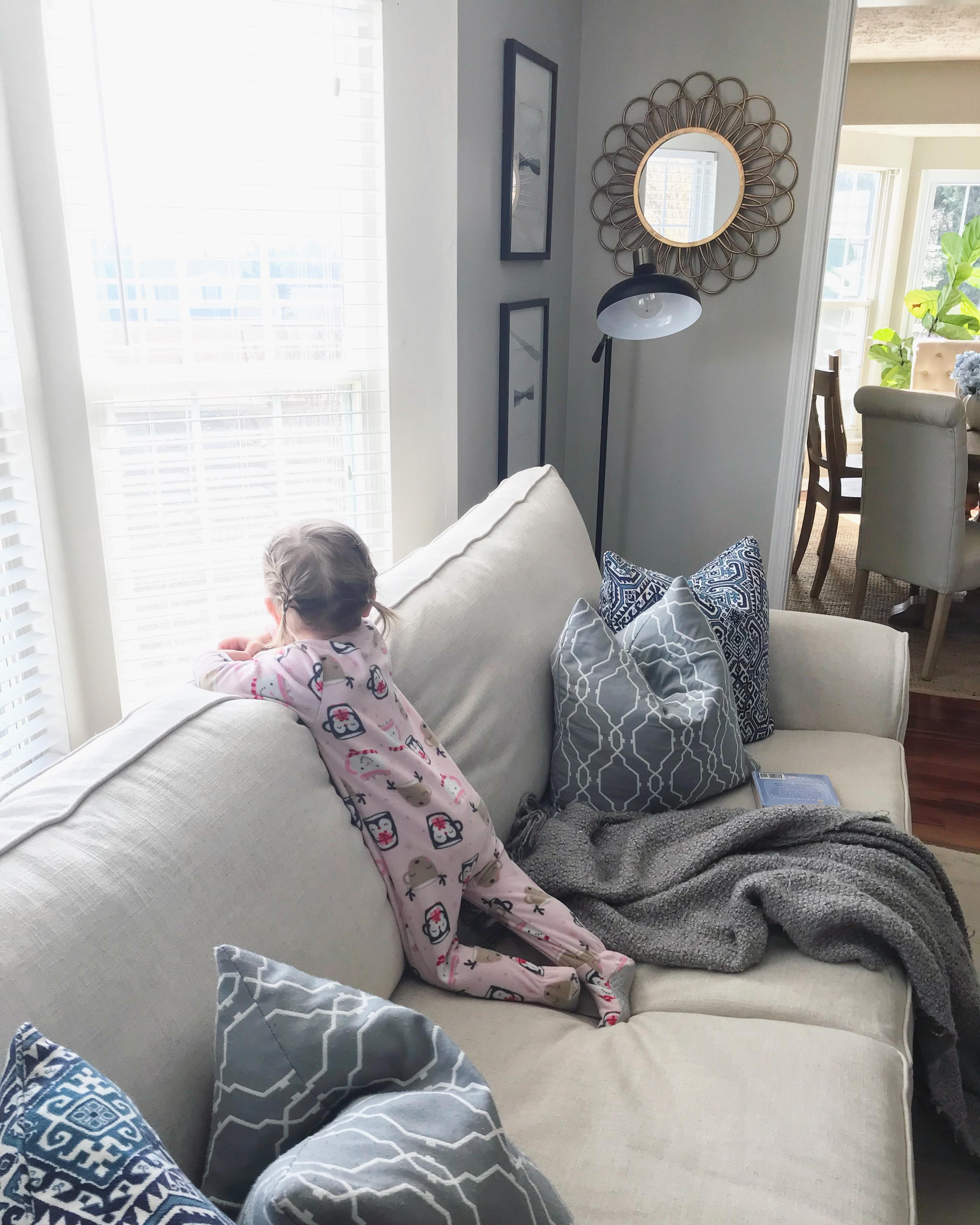 sophie on new sofa